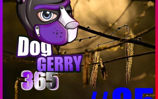 Gerry 365 #85: 26.03. – Kleine Erinnerung und gute Nacht #WerbungFürMich